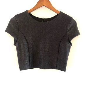 NWT Express Shimmer Crop Top